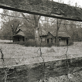 The Old Homestead by Charles Grubbs - Black & White Buildings & Architecture ( old homestaed, black and white, old wood, old barn, old days )