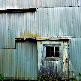 Tin Back Door by Martin Stepalavich - Buildings & Architecture Other Exteriors (  )