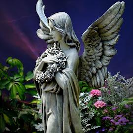 Angel by Shawn Thomas - Artistic Objects Still Life (  )