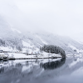 Winter Fjord by George Nichols - Landscapes Travel ( calm, water, north, travel, landscape, scandanavia, norway, fjord, winter, cold, village, ice, snow, arctic )