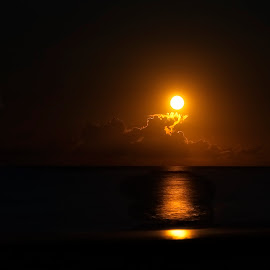 Orange Moonrise OBX, NC by Lawayne Kimbro - Landscapes Beaches ( ©lawayne kimbro photography, ©kimbrophoto, ©kimbro photography )