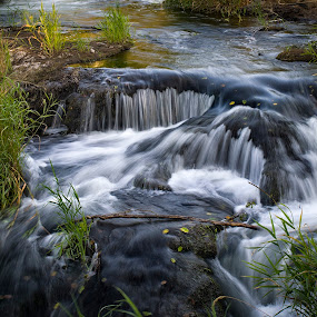 OCC Advanced Group Tumwater Falls Photowalk by Scott Wood - Landscapes Waterscapes ( water, washington, park, grass, waterfall, falls, scenic, tumwater, rocks, river )