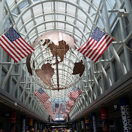 Ohare Independence by Jason Bales - Public Holidays July 4th