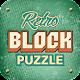 Block Puzzle Retro-1010 matrix