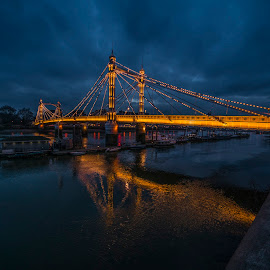 Albert Bridge by Yordan Mihov - Buildings & Architecture Bridges & Suspended Structures ( water, uk, thames, london, prince, albert, night, boat, bride, light, river )