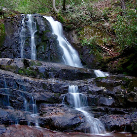 by Roxanne Collin - Landscapes Waterscapes ( waterfall, laurel falls, smoky mountains )
