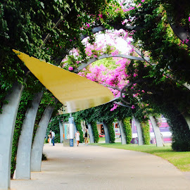 South Bank  by Colette Edwards - City,  Street & Park  City Parks ( relax, tranquil, relaxing, tranquility )