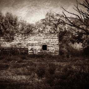 by Jennifer Holmes - Buildings & Architecture Decaying & Abandoned ( old house, sepia, black and white, ruins, decay, abandoned )