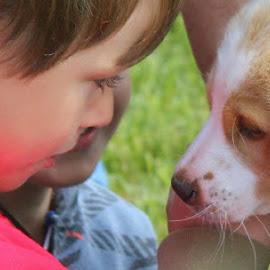 Puppy Love by Renee Heiliger - Animals - Dogs Puppies ( love, puppy, boy )