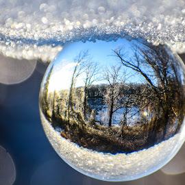 by Tiffany Serijna - Digital Art Places ( water, abstract, up close, lensball, peaceful, bright, green, vivid, art, ground, digital, close up, droplets, wall art, leafs, nature, tiffanyserijna, wall, rain, outside )