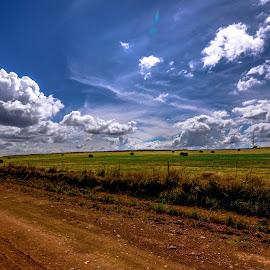 Suikerbos 1 by Doornkop Photos Hein van Niekerk - Landscapes Cloud Formations