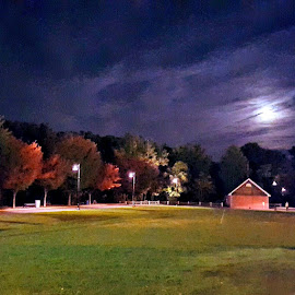 The Moonlit Trees  by Michelle Johnston - Landscapes Prairies, Meadows & Fields ( #nightphotography, #moonlightscape, #trees, #colors, #naturelovers, #green grass, #cloudscape )