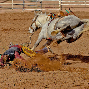 by Jim Moon - Sports & Fitness Rodeo/Bull Riding ( rider, cowboy, bucking bronc, whisper river photography, bronc riding,  )