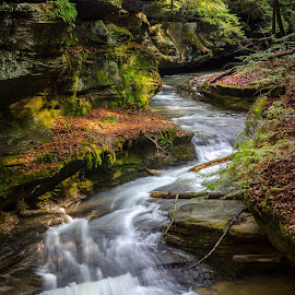 Old Man's Cave stream by Bruce Lindman - Landscapes Forests ( stream, waterfall, long exposure, forest, spring )