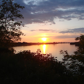 Sunset over a city by Ivan Mendes - Landscapes Sunsets & Sunrises ( clouds, water, vukovar, sky, blue, sunset, green, shrub, plants, croatia, danube, sun, shrubs, city )