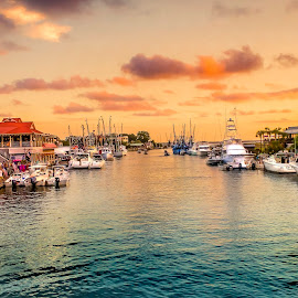 Shem Creek by DB Channer - Landscapes Waterscapes ( water, sunset, creek, boat, waterway )