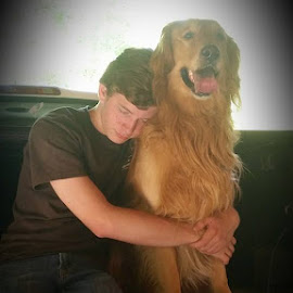 Best friend by Glenis Lowrance - Animals Other