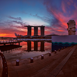 Epic Sunrise @ the Merlion by Gordon Koh - City,  Street & Park  City Parks ( skyline, park, merlion, mbs, sunrise, singapore, city )
