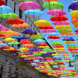 Umbrellas roof by Eugen Opritescu - City,  Street & Park  Street Scenes ( shop, decorative, colorful, handicraft, street, made, contest, equipment, travel, beauty, people, sun, artwork, multicolored, city, parade, sky, portuguese, sunny, tradition, parasol, ornament, weather, festival, portugal, anniversary, annual, editorial, decoration, texture, umbrella, art, traditional, tourism, variety, holiday, pattern, color, aveiro, popular, outdoor, background, artistic, day, walk, conceptual, culture, design )
