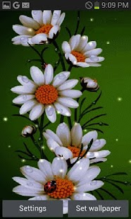 White Flowers Beauty LWP - screenshot