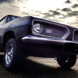 Barracuda  by Todd Reynolds - Transportation Automobiles