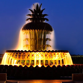 The Pineapple Fountain at Charleston's Waterfront Park by Kevin Cunningham - City,  Street & Park  Fountains