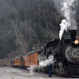 Durango Train by Dawn Hoehn Hagler - Transportation Trains ( steam locomotive, durango, locomotive, steam train, colorado, train, transportation, silverton )