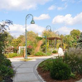 Children's Park by J Marlene Dunbar - City,  Street & Park  Street Scenes