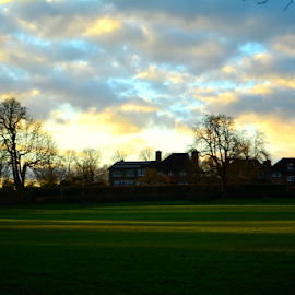 End of the Day by Nasr Qureshi - Landscapes Prairies, Meadows & Fields ( clouds, park, blue, green, priory, sunset, reigate, surrey, sunshine, day,  )