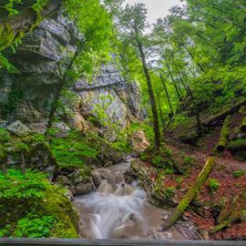 Vrajzi prolaz by Stanislav Horacek - Landscapes Forests