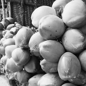Nariel Pani!! by Sandip Roy - Black & White Objects & Still Life