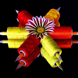 Red n Yellow by Asif Bora - Artistic Objects Other Objects (  )