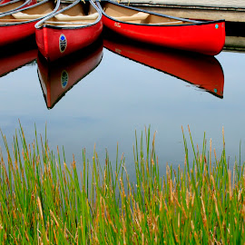 Red canoes by Gwen Paton - Transportation Boats ( water, fairy stone state park, reflection, lake, virginia, red canoe )