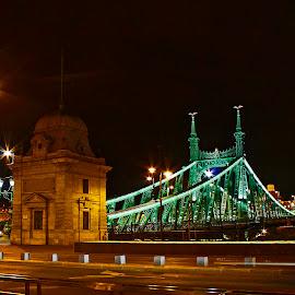 Green Bridge 2 by Wilson Beckett - Buildings & Architecture Bridges & Suspended Structures