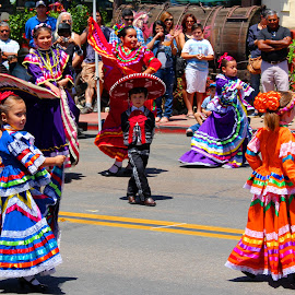 Cinco De Mayo Festival  by Harry  Phillips - People Musicians & Entertainers