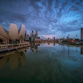 by Gordon Koh - City,  Street & Park  Vistas ( reflection, city, dusk, night, asia, city park, skyline, modern, symmetry, nightscape, cityscape, esplanade, blue hour, park )
