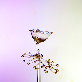 wine glass by Harish Khanna - Abstract Water Drops & Splashes