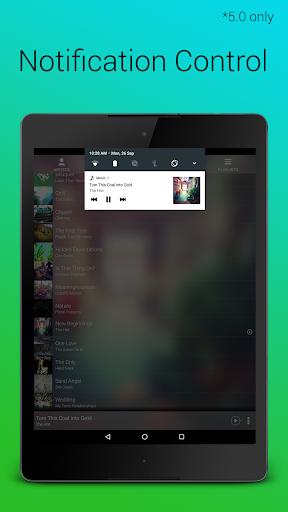 Audio Player screenshot 14