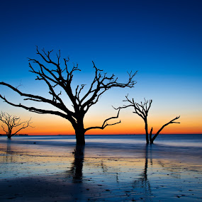 Botany Bay Sunrise by Serge Skiba - Landscapes Beaches ( water, sand, waves, sc, ocean, seascape, beach, landscape, south carolina, charleston, edisto, color, sunrise )