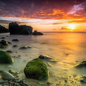 Multi-colors- Setubal Portugal by Emanuel Fernandes - Landscapes Waterscapes ( water, colors, beach, portugal, long, rocks )