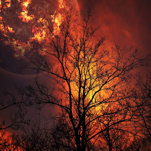 Fire Planet.jpg