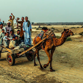 by Mohsin Raza - Transportation Other