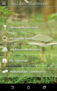 Audubon Mushrooms - screenshot