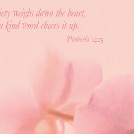 Proverbs Encouragement by Steven Faucette - Typography Quotes & Sentences ( encouragement, proverbs, scripture, bible )