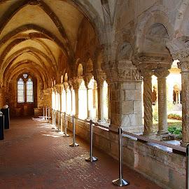 Elne - Le cloître by Gérard CHATENET - Buildings & Architecture Places of Worship