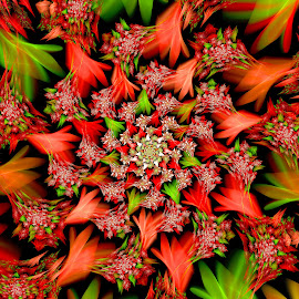 Christmas Blossom by Peggi Wolfe - Illustration Abstract & Patterns ( abstract, wolfepaw, gift, unique, bright, illustration, christmas, bloom, fun, digital, blossom, print, décor, pattern, color, unusual, fractal, floral, flower )