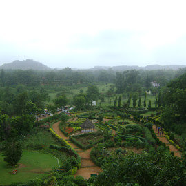 Pachmarhi India by Virendra Verma - Landscapes Prairies, Meadows & Fields
