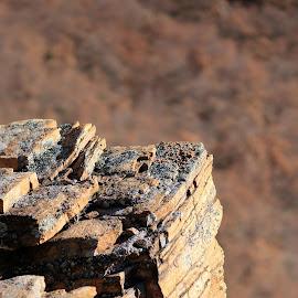 Red rocks by Sergey Sokolov - Nature Up Close Rock & Stone ( cabin, mountain, hut, peak, shack, rocky, steep, stone, rock, log, alpine, heap, huge, highland, height, alp, pile, chalet )