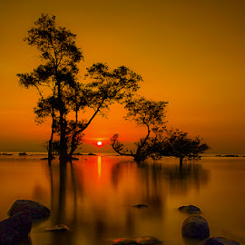 Silent is Golden by Chandra Irahadi - Landscapes Sunsets & Sunrises ( water, shore, waterscape, relax, tropical, reflections, beach, seascape, seaside, relaxation, relaxing, shadows, sunset, sunsets, shoreline, trees, rocks, evening, golden, golden hour )