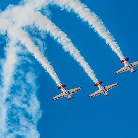 Three Harvards in Display by Johan Jooste Snr - Transportation Airplanes ( harvards, aircraft, three, smoke trails, planes, namibia )